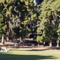 Open space in the park affords some nice picnic opportunities.- Presidio Park
