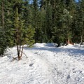 Start of the trail to the Mountain View Shelter.- Mountain View Shelter Snowshoe