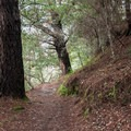 Hiking La Corona Trail- La Corona Trail Hike