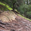 Areas of uneven terrain along the La Corona Trail.- La Corona Trail Hike