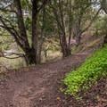 Hiking La Corona Trail.- La Corona Trail Hike
