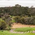Disk Golf Course at DeLaveaga Park.- La Corona Trail Hike