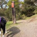 Trailhead from the Top Of The World.- La Corona Trail Hike