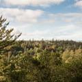Great views from La Corona Trail.- La Corona Trail Hike