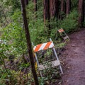 Look out for landslides in the area.- Branciforte Creek Trail Hike
