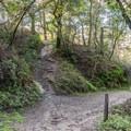 Upper DeLaveaga Loop Trailhead.- Enchanted Trail Hike