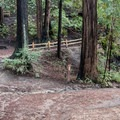 Trail intersection.- Enchanted Trail Hike