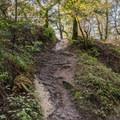 Trailhead from Enchanted Trail.- Upper DeLaveaga Loop Hike