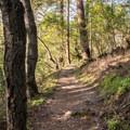 Trail near the edge of the DeLaveaga Golf Course.- Upper DeLaveaga Loop Hike