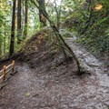 The Upper DeLaveaga Loop has some switchbacks with elevation change.- Upper DeLaveaga Loop Hike