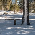 The fire road entrance near the swim beach at China Cove.- Donner Memorial State Park Snowshoe