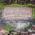 Jeter stone near interpretive marker 15.- Redwood Grove Loop Hike