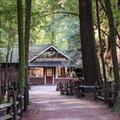 Visitor center near the trailhead.- Redwood Grove Loop Hike