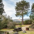 Campsite with a view.- Henry Cowell Redwoods State Park Campground