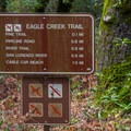Hiking trails close by.- Henry Cowell Redwoods State Park Campground