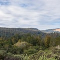 Some campsites have a fantastic view.- Henry Cowell Redwoods State Park Campground