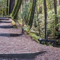 Eagle Creek Trail and Rincon Road connection.- Eagle Creek Trail Hike