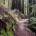 Hiking Eagle Creek Trail.- Eagle Creek Trail Hike