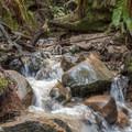 Eagle Creek.- Eagle Creek Trail Hike