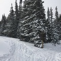 Multiple trail junctions; stay left for Lefthand Park Reservoir.- Lefthand Park Reservoir Snowshoe
