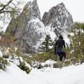 Continuing along the trail.- Castle Dome Snowshoe