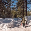 The beginning of the Donner Memorial State Park snowshoe.- Donner Memorial State Park Snowshoe