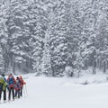 Arriving at the other side of Lake Callaghan- Callaghan Lake Snow Shuttle, Callaghan Country