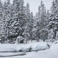 Starting our climb through the trees- Callaghan Lake Snow Shuttle, Callaghan Country
