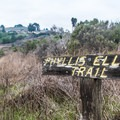 Phyllis Ellman was instrumental  in preserving Ring Mountain.- Ring Mountain Preserve Hike