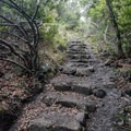 Loop Trail steps.- Ring Mountain Preserve Hike