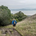 This is a popular trail with hikers, bikers and dogs.- Ring Mountain Preserve Hike