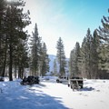 Parking may require competing with snowmobiles, but you'll soon leave them behind.- Donner Ridge Snowshoe via Johnson Canyon