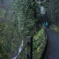 Trail leading up to Benson Bridge at Multnomah Falls.- Multnomah Falls + Lodge