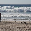Mission Beach.- Mission Beach