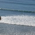 Surfing is popular at San Onofre.- San Mateo Campground