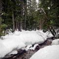 - Finger Lakes Snowshoe Loop, Callaghan Country