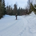 - Mainline Trail, Callaghan Country