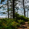 - Pacific Northwest National Scenic Trail Section 15