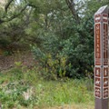 Signs make the trails in this wilderness park very easy to navigate.- Borrego Canyon + Red Rock Canyon Trails