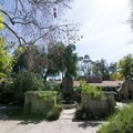 Gardens near the entrance.- Los Angeles County Arboretum + Botanic Garden