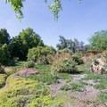 African garden.- Los Angeles County Arboretum + Botanic Garden