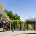 Posing for photos near Tule Pond.- Los Angeles County Arboretum + Botanic Garden