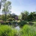 Meadowbrook.- Los Angeles County Arboretum + Botanic Garden