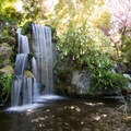 Meyberg waterfall.- Los Angeles County Arboretum + Botanic Garden