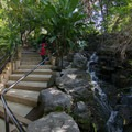 Small water features along the path toward Tallac Knoll.- Los Angeles County Arboretum + Botanic Garden