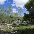 Looking down toward the amphitheater in Crown Valley Park.- Niguel Botanical Preserve
