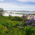 Bike path on the southern end of the park.- Mission Bay Bicycle Loop through Crown Point