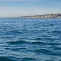 Looking northeast along the coast.- La Jolla Shores