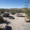Typical campsite at Cottonwood Campground.- Cottonwood Campground