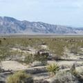 View of Pinto Mountain (3,983 ft) from Pinto Basin, Joshua Tree National Park.- Pinto Basin